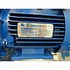 Кормоизмельчитель Эликор 3 электрический для зерна и початков кукурузы, фото 3
