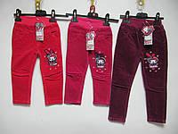 Вельветовые штаны kids wear 2012А