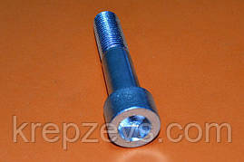 Винт М16 DIN 912 оцинкованный