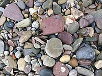 Галька морская, фото 1