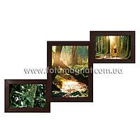 "Деревянная мультирамка на 3 Фото ""Руноко Комбо-мини Венге"" (фоторамка коллаж 52 х 32 см)"