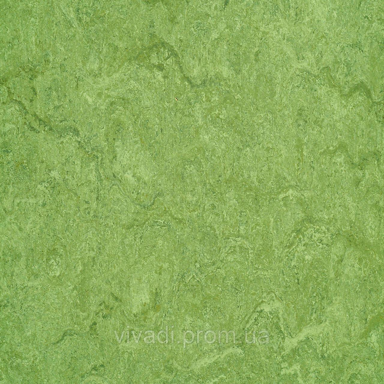Натуральний лінолеум Marmorette PUR - колір 125-100