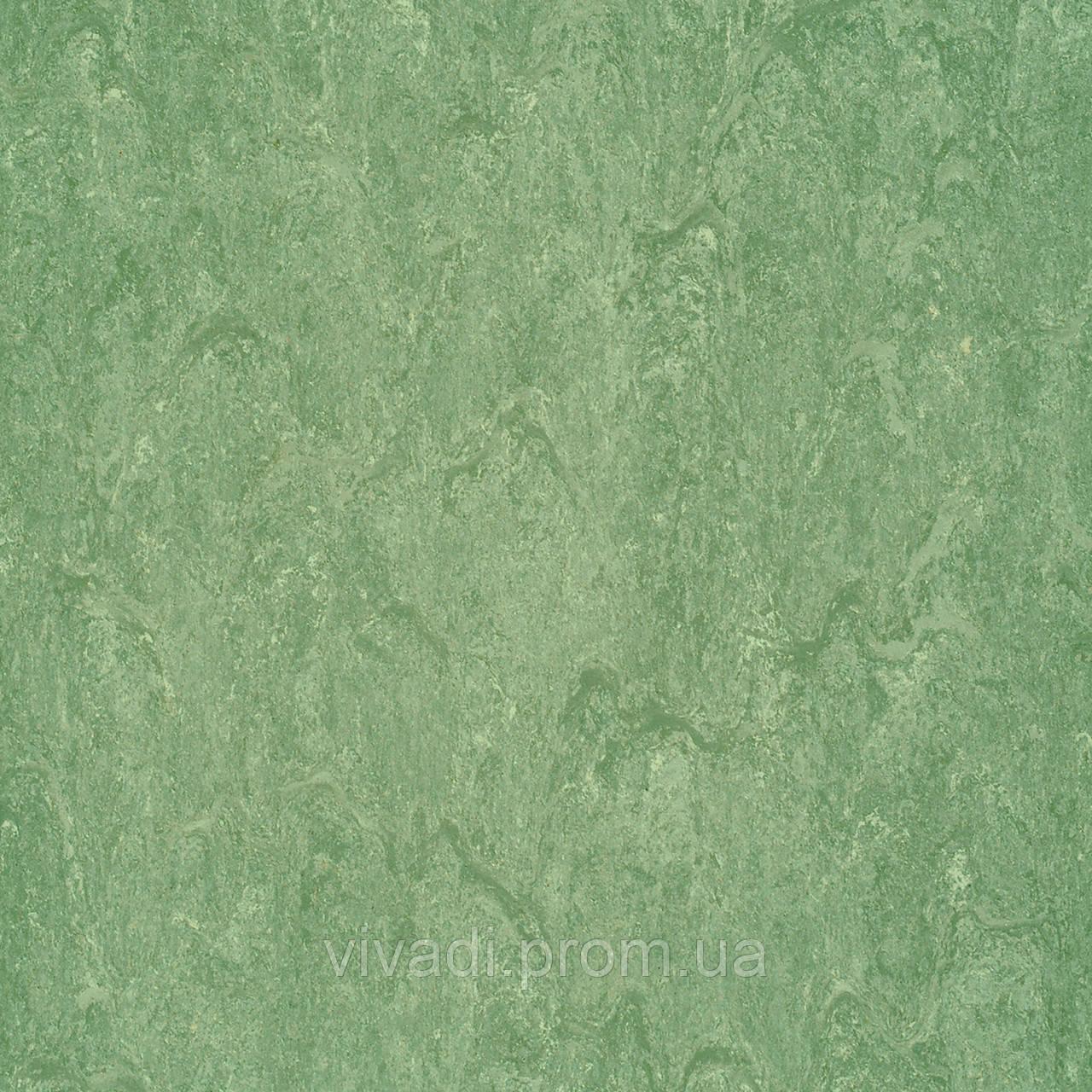 Натуральний лінолеум Marmorette PUR - колір 125-043