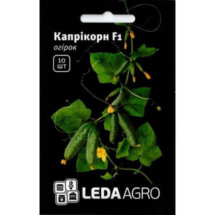 КАПРИКОРН F1 / KAPRIKORN F1, 10 семян — огурец партенокарпический, Yuksel Seeds, фото 2