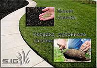 Посев газона; укладка рулонного газона