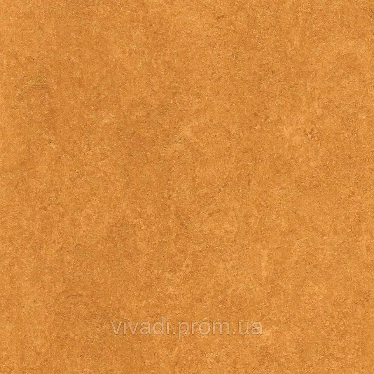 Натуральний лінолеум Marmorette PUR - колір 125-174