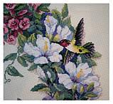 DIMENSIONS Hummingbird Wreath Венок с колибри , фото 3