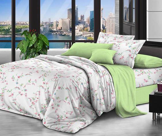 Двуспальный комплект постельного белья евро 200*220 сатин (10618) TM КРИСПОЛ Украина, фото 2