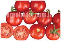 Насіння томату детермінантного Шаста F1 (85-90 днів) (10000 нас.) Lark Seeds, самий ранній в світі
