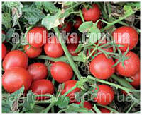 Томат детермінантний Шкіпер F1 ( 95-100 днів) (1000 нас.) Lark Seeds