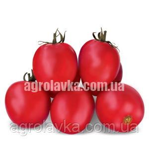 Купить Насіння томату детермінантного Грандо F1 ( 95-100 днів) новинка!! (5000 нас.) Lark Seeds