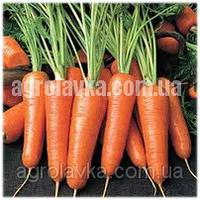 Морковь Курода (90 дней), насыщенный цвет (0,5 кг) Lark Seeds