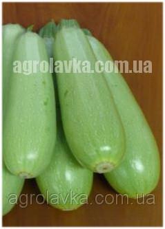 Кабачок Теренум F1 (43 дня) (500 сем.) Lark Seeds - Агролавка - Интернет-магазин в Одессе