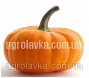 Тыква Вест (среднеспелый) мускатного типа (0,5 кг) Lark Seeds