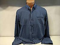 Рубашка  (на кнопке ) RCB RECOBAR , фото 1