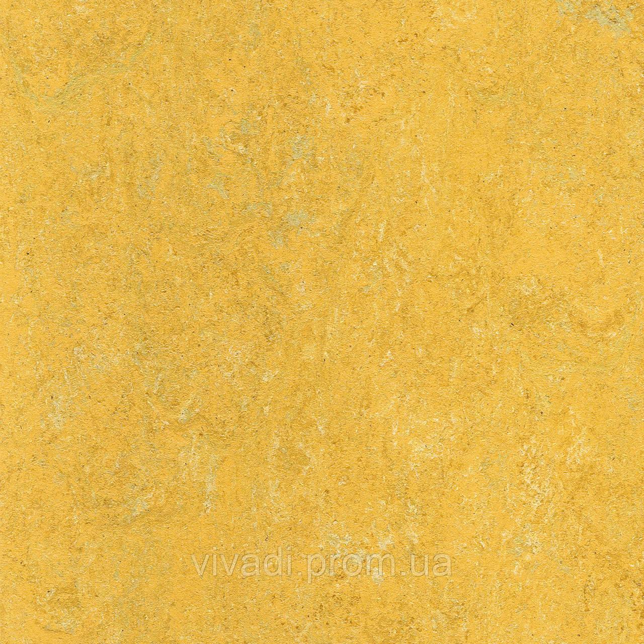 Натуральний лінолеум Marmorette PUR - колір 125-173