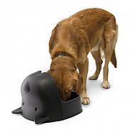 Миска для собак с крышкой Mr.Dog Qualy, фото 2