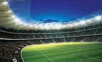 Фотообои бумажные на стену 368х254 см : Стадион под открытым небом (323P8CN), фото 1