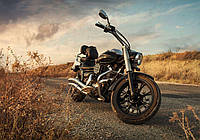 Фотообои готовые 254x184 см Мотоцикл (11727CN), фото 1