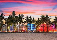Фотообои готовые 254x184 см Пляж под пальмами (11756CN), фото 1