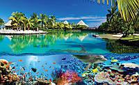 Фотообои готовые 368x254 см Кораллы и Мальдивы (3356.20056), фото 1