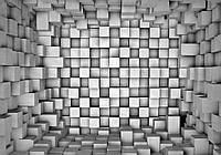 Фотообои готовые 368x254 см Область в квадратах (2505.21021), фото 1