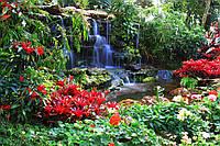Фотообои бумажные на стену 368х254 см : Маленький водопад (166P8CN) 312*219 см Флизелиновые