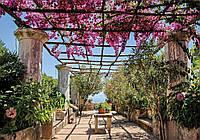 Купить фотообои цветы 3D на стену 368x254 см : Цветочная крытая терраса (CN10334), фото 1