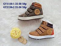Детские ботинки кеды на меху для мальчиков Размеры 31-36