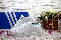 Женские Кеды Adidas SuperStar Белые, белая полоска 10956