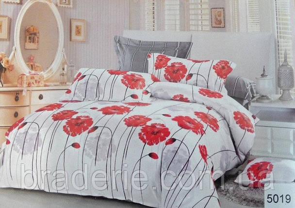 Сатиновое постельное бельё евро размер Elway 5019, фото 2