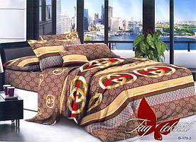 Комплект постельного белья PS-NZ179