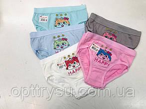 """Труси дитячі для дівчинки""""Кішка"""" M 4-5 років"""