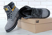 Мужские зимние ботинки Caterpillar Colorado Fur Grey, мужские ботинки. ТОП Реплика ААА класса., фото 2