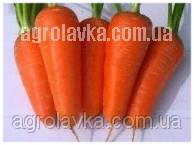Морковь Ред Коред (100-105 дней) Тип шантане, (0,5 кг) Lark Seeds