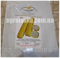 Кукуруза сахарная (Sh2 тип) Раннее Наслаждение F1 (68 дней) сверхранняя, кочан 24 см (25000 нас.) Lark Seeds