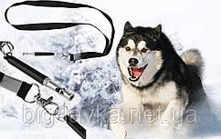 Компактний ультразвуковий свисток для собак Чорний