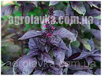 Базилик Пурпл Ливз фиолетовый, (50 гр) Lark Seeds