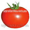 Томат детермінантний Мобіл (130 днів) (0,25 кг) Lark Seeds