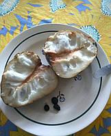 Гравиола ( гуанабана) семена, фото 1