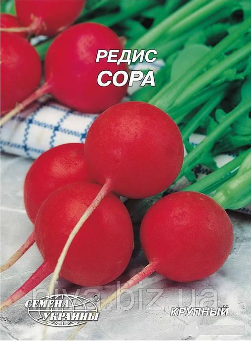 Сора семена редиса Семена Украины 3 г
