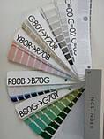 Каталог/палитра цветов NCS S 1950, фото 3