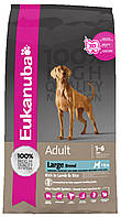 Корм для собак крупных пород Eukanuba Adult Large Breed Lamb & Rice
