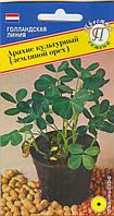 Арахис культурный (земляной орех), 5сем.