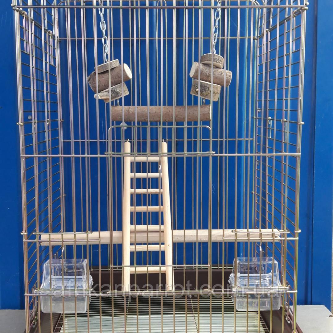Клетка для среднего попугая 52*42*78см