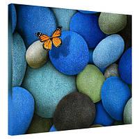 Картина на холсте Бабочка 40х50 см (H4050_YM007)