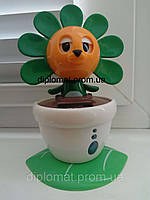 Солнечный цветок Flip Flap