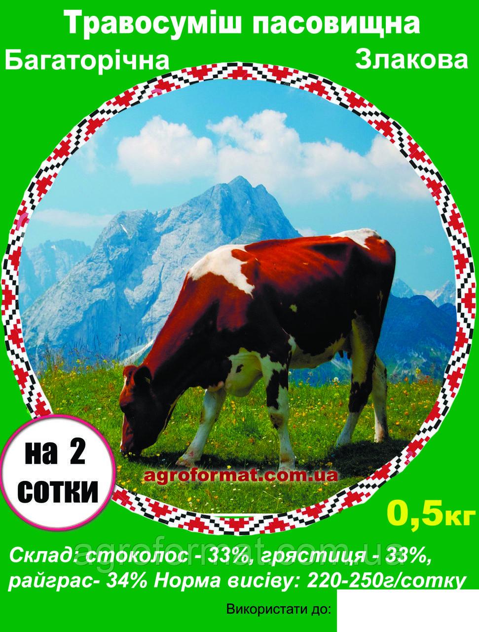 Травосмесь пастбищная  0,5 кг