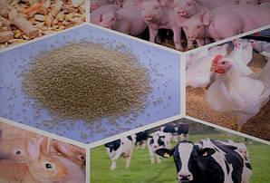 Кормові добавки, замінники молока