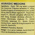 Гокшуради Гуггул (Gokshuradi Guggulu DS, SDM), 40 таблеток - Аюрведа премиум качества, фото 2